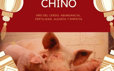AÑO CHINO DEL CERDO 2019