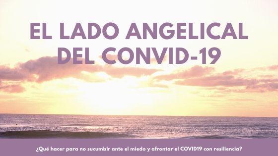 El lado positivo del Coronavirus  (COVID-19 )